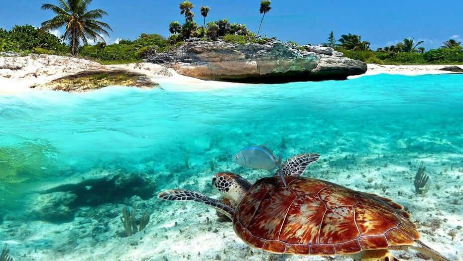 principais pontos turísticos em Cancún