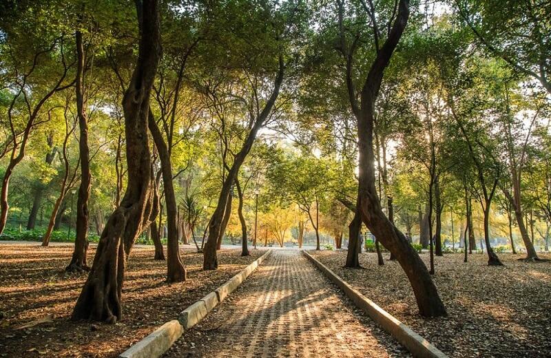 Passeio pelo Bosque Chapultepec na Cidade do México