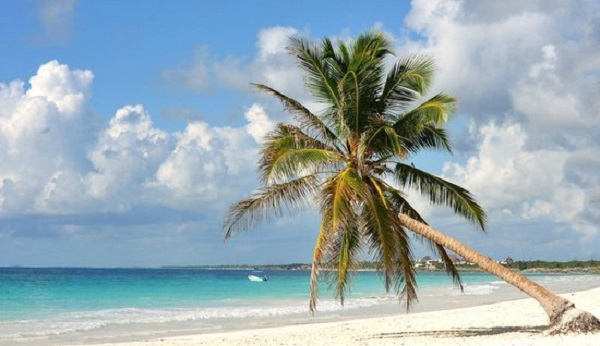 Visita Playa Paraíso en Cancún