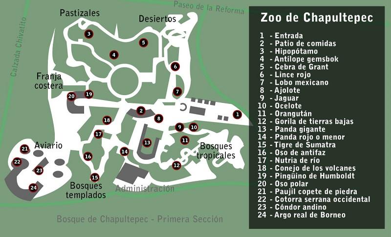 Mapa del Zoológico de Chapultepec en la Ciudad de México