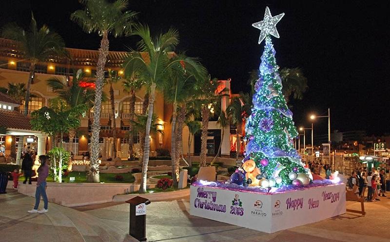 Navidad en Cabo San Lucas - Los Cabos